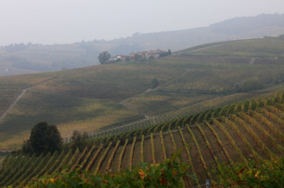 nebbia_sulle_langhe