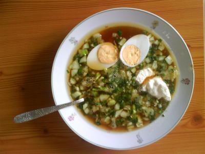 Cucina russa e italiana okroshka for Cucina russa